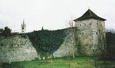 "Sanierung des Mühlbacher ""Schusterturms"""